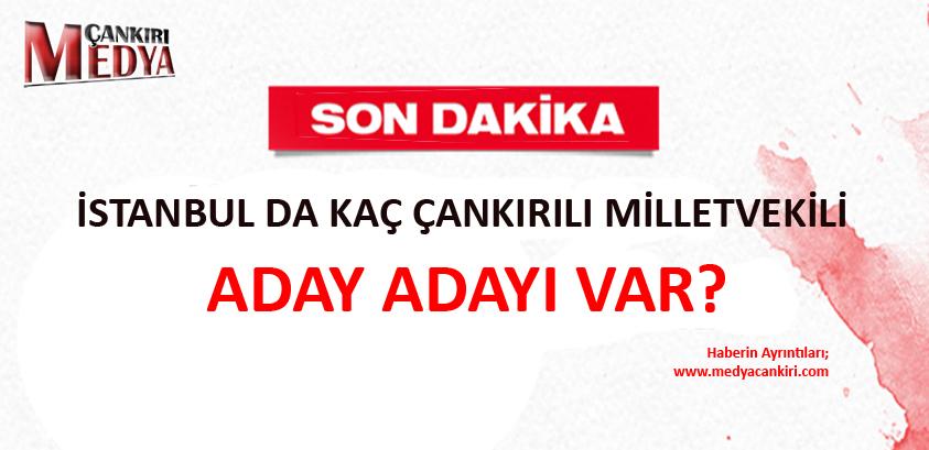 İstanbul da Kaç Çankırılı Milletvekili Aday Adayı var?